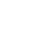 Access Customers Icon